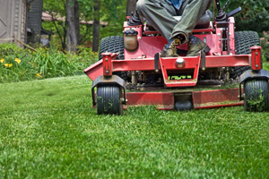 About Calhoun Landscaping Company