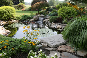 Acworth Landscaping Company